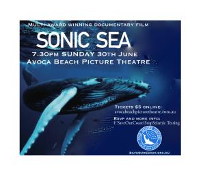 sonic sea_avoca beach